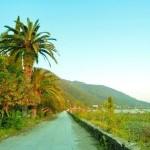Незавидная судьба Абхазии