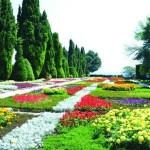 «Гетсиманські сады» и королевские погреба Балчіка