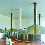 От настоящего чешского пива никто не пьянеет