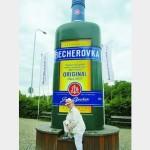 А тринадцатый лечебный источник – «Бехеровка»