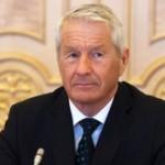 Ягланд представил новый план действий Совета Европы для Украины